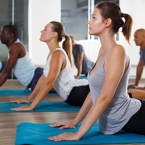 Premium Plus Yoga